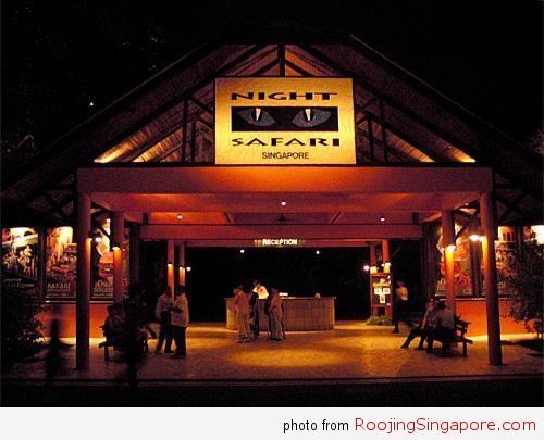 Night_Safaris_zoo