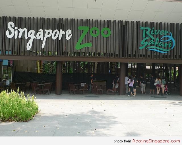 river-zoo-ea0c_z